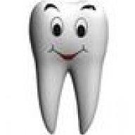 Der Zahn
